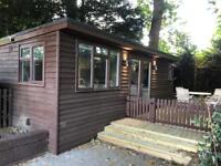 Garden log cabin available for possible rental