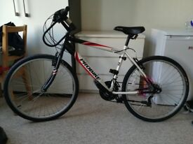 Used Bicycle fo Sale