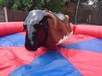 Rodeo Bull Hire - South Wales