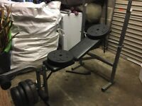 Work out bench weights bar