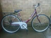 Ladies claudbutler townbike