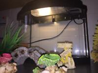 Aquarl Tropical aquarium fish tank