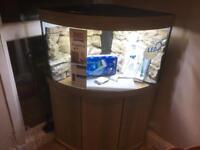 New Juwel Trigon corner fish tank aquarium