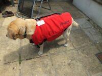 Crewsaver Petfloat/lifejacket