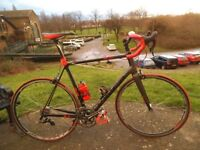 XXL 60cm Viner Mitus 0.6 Full Monoque Carbon Racer Full Campagnolo Athena 11speed Group Miche Wheels