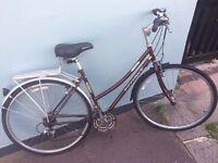 Used Burgundy Ridgeback Metro Womens Bike 7 speed