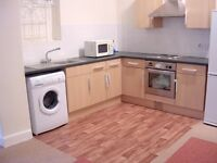 Spacious FURNISHED THREE DOUBLE BEDROOM FLAT - St Saviours Road, Brixton, London SW2