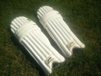 Boys / Youth Cricket Batting Pads, Gloves, Bag & Helmet