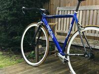 Terry Dolan Single Speed/Fixie bike