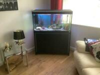 Tropical fish tank &stand