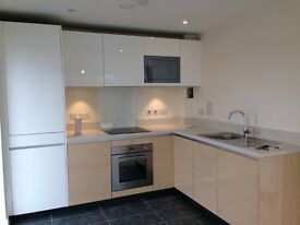 Spacious, Modern 1 Bedroom Flat to Rent w/ Balcony, Furnished or Unfurnished, available 14th August
