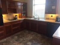 compleate kitchen including appliances