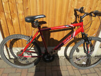 MENS MOUNTAIN BIKE, APOLLO FEUD, GREAT CONDITION, READY TO RIDE AWAY.