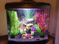 TROPICAL AQUARIUM FULL SET-UP FISH TANK COMPLETE MINT CONDITION 28L PLEASE READ