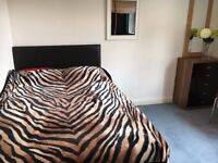 Large double room to let in Madley Park