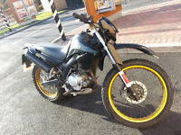 Yamaha XT125R- 125CC Black and Gold Learner legal