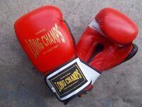 Champion Boxing Gloves