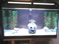 60L tank and stand