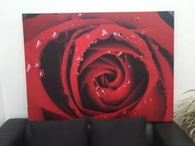 Brand new rose canvas frame