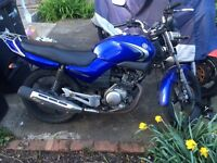 Yamaha ybr 125 for sale