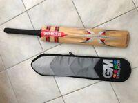 Gray Nicolls cricket bat - Viper