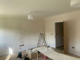 Painter and decorator nov spaces
