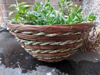 Hanging basket woven wooden