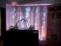 Twinkle light backdrop