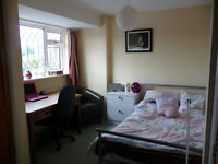 York fulford, 1 double 395, 1 single 385, excld gas and elec, wifi incl, min 3m