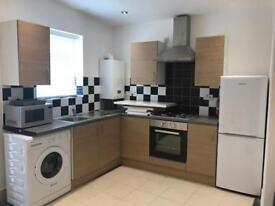 Stunning 2 bedroom Apartment in Leyton (3 mins walk to New Leabridge Station)