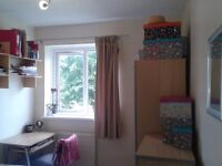 Lovely room in clean and quiet house in Putney