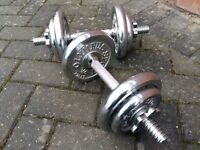 19KG CHROME DUMBBELL WEIGHTS