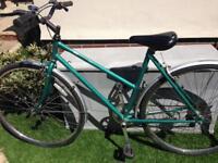 SOLD Adult Ladies bike Raleigh Pioneer