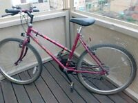 Raleigh Ladies Bike (MTB) in excellent condition