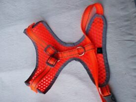Dog harness S-M unused,