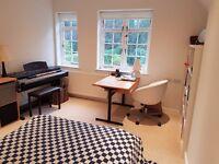 Large double room in hampstead garden suburb