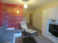 Lovely large new built two bedroom flat available in Beaufort park Colindale
