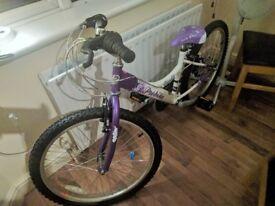 Probike Melody Bike Purple & White (New)