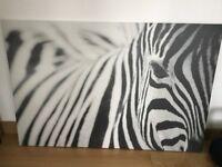 Ikea black & White Zebra Print