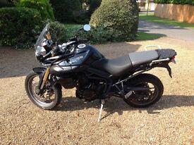 Triumph tiger 800 black immaculate