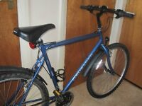 MENS PROBIKE CRUSADER 21 INCH FRAME IN GOOD CONDITION