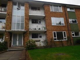 Large three bedroom Flat, Small outside space, wood flooring, Furnished N12 8PA