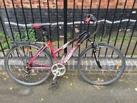 Canull Indy Hybrid Bike with extras