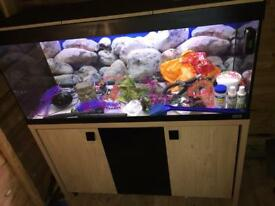 Fluval Roma 240ltr 4ft fish tank/aquarium setup