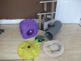 Cat scratch post and toys