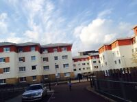Stunning 3 double bedroom Apartment in London E3, Zone 2