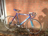 Ammaco 4000 Sport. Men's road bike. Fully serviced, fully safe and ready to go.