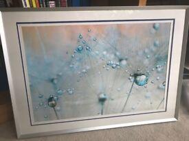 2 LARGE modern brushed steel picture frames
