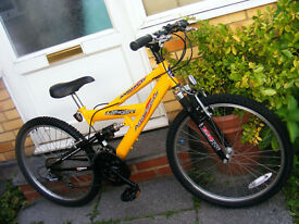 "AMMACO 24"" WHEEL BIKE IN GREAT WORKING ORDER AGE 8+"