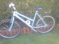 Ladies 21 speed bicycle